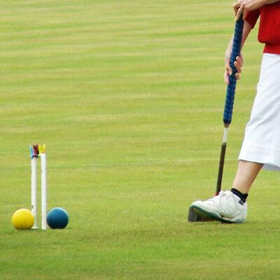 JS26 Croquet & Bowls Lawn Grass Seed Online